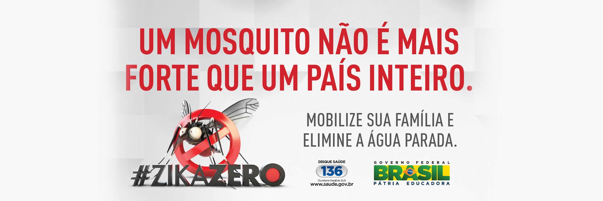 Campanha mosquito zika
